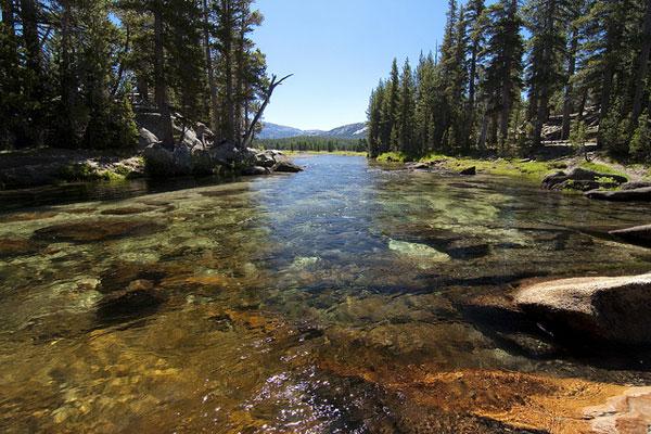 Tuolumne River in Yosemite